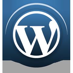 Insights WordPress Plugin