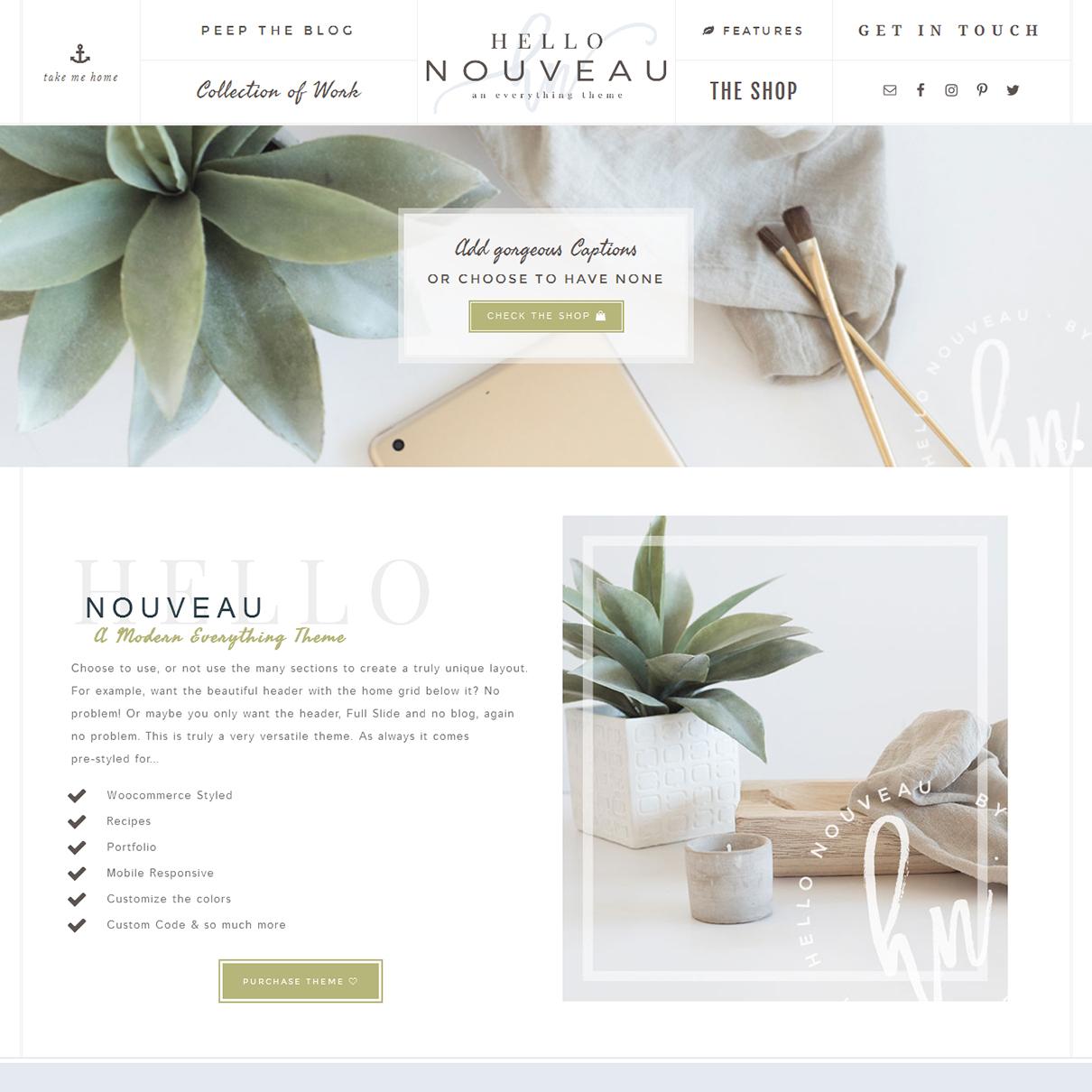 Nouveau-wp-theme-for-women-enterprenuers