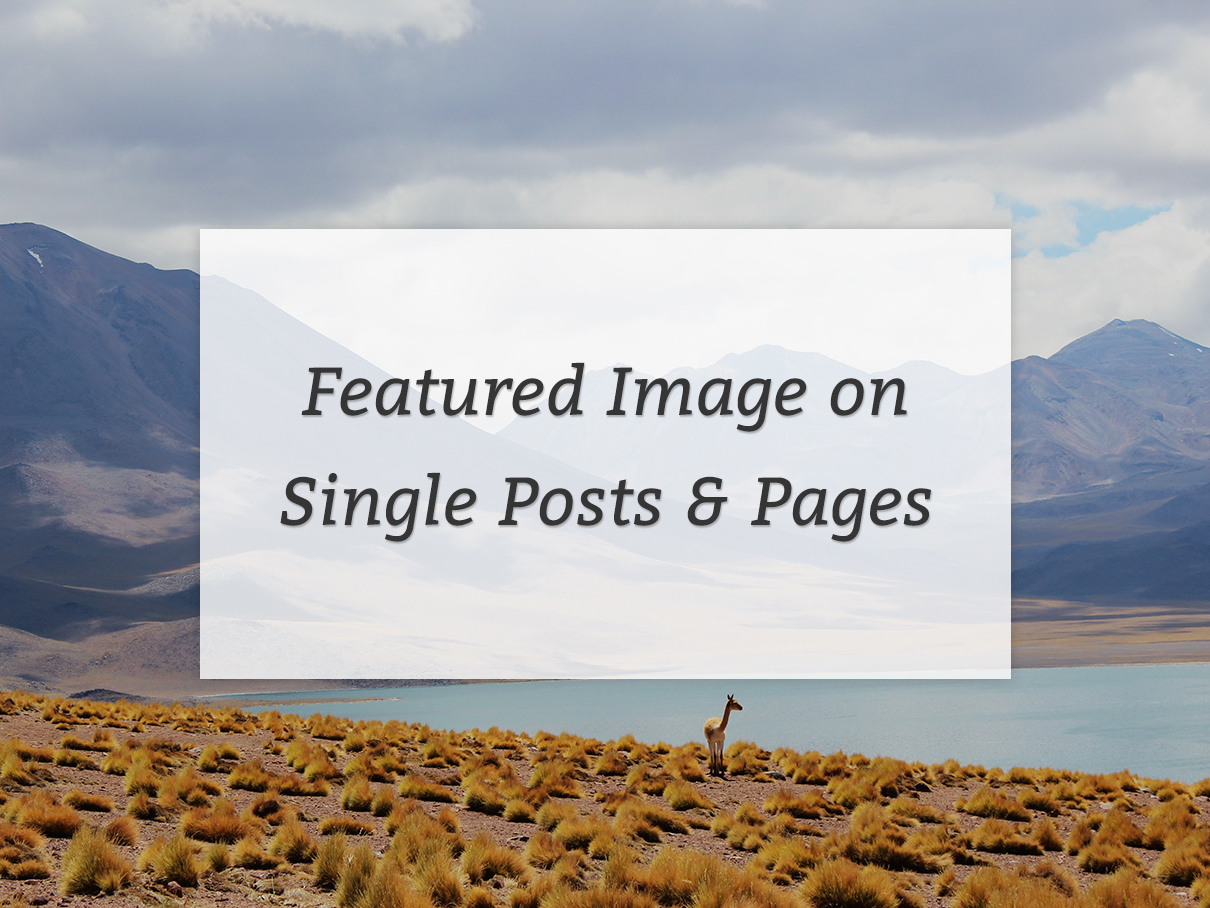 Featured images on posts and pages in Genesis
