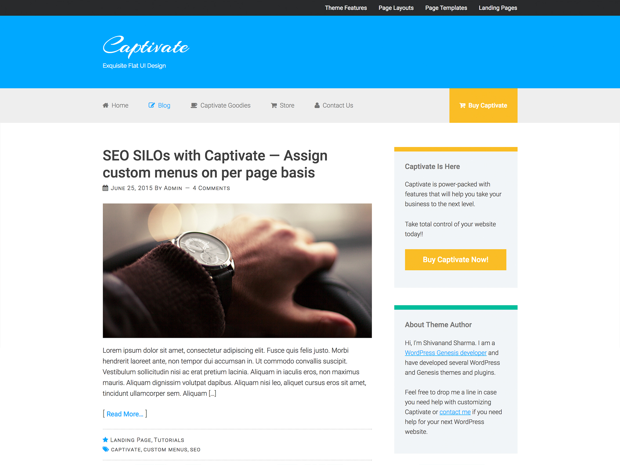 Theme Development — Captivate (Premium Theme)
