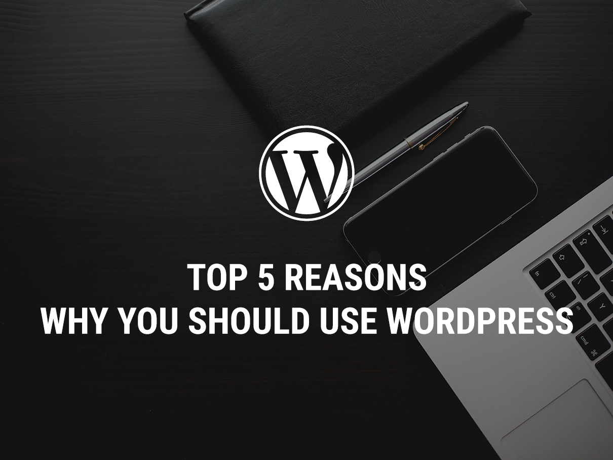 Top 5 Reasons Why You Should Use WordPress
